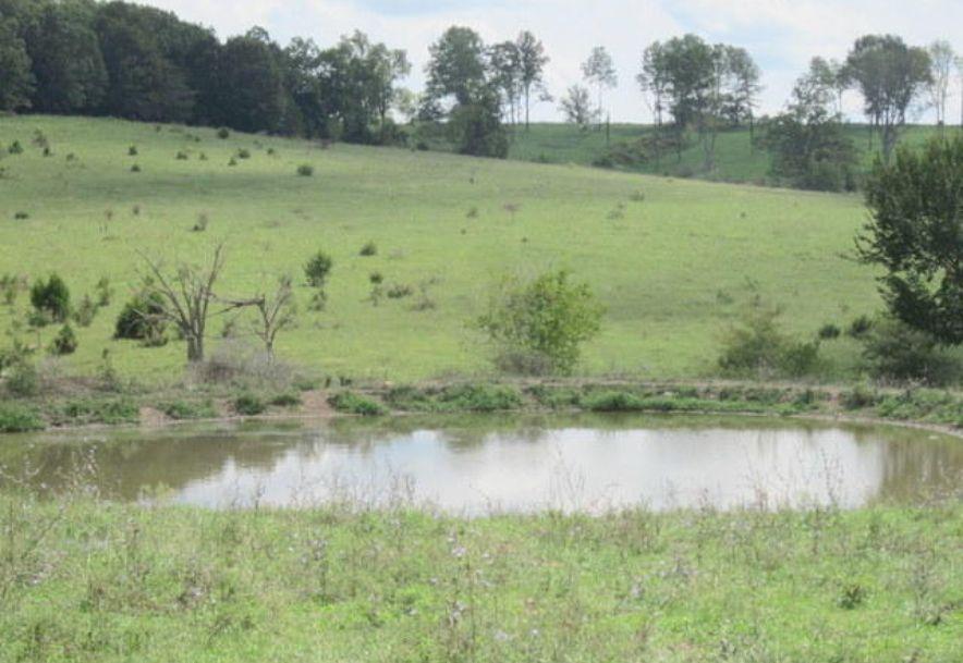 5751 State Highway E Hartville, MO 65667 - Photo 77