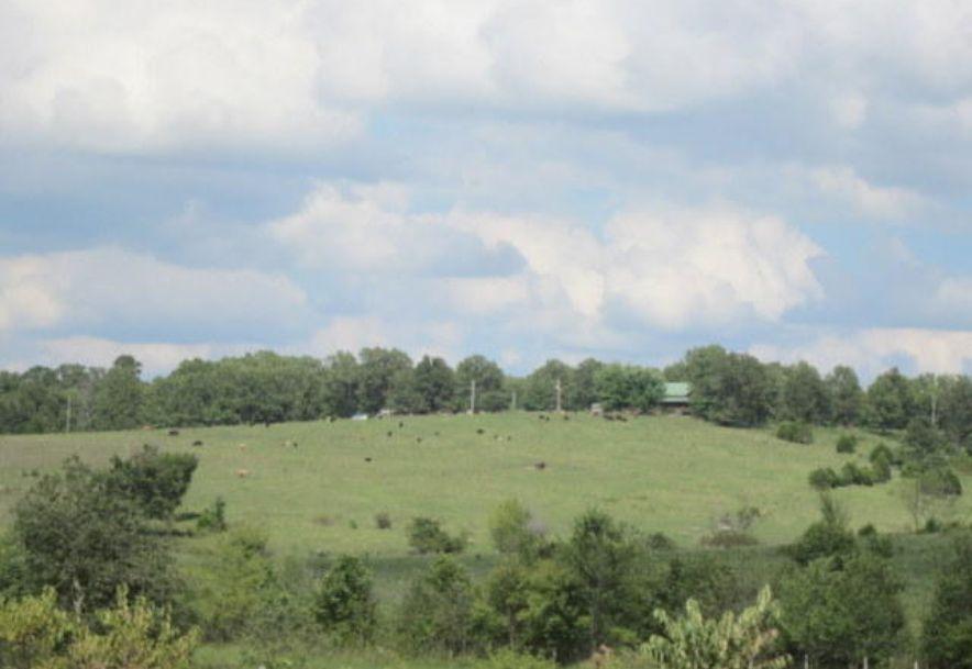 5751 State Highway E Hartville, MO 65667 - Photo 86