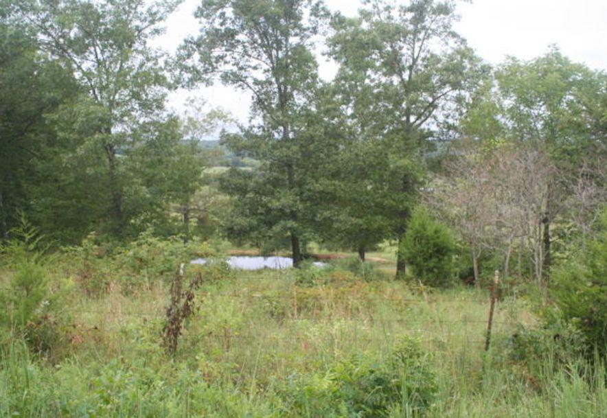 5751 State Highway E Hartville, MO 65667 - Photo 89
