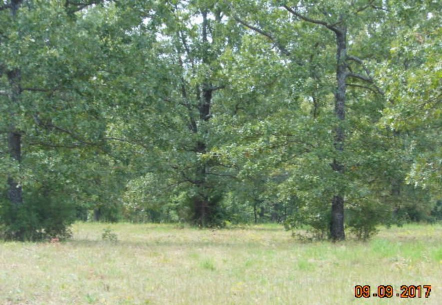 500 Dry Hollow   (5-133) Road Camdenton, MO 65020 - Photo 2