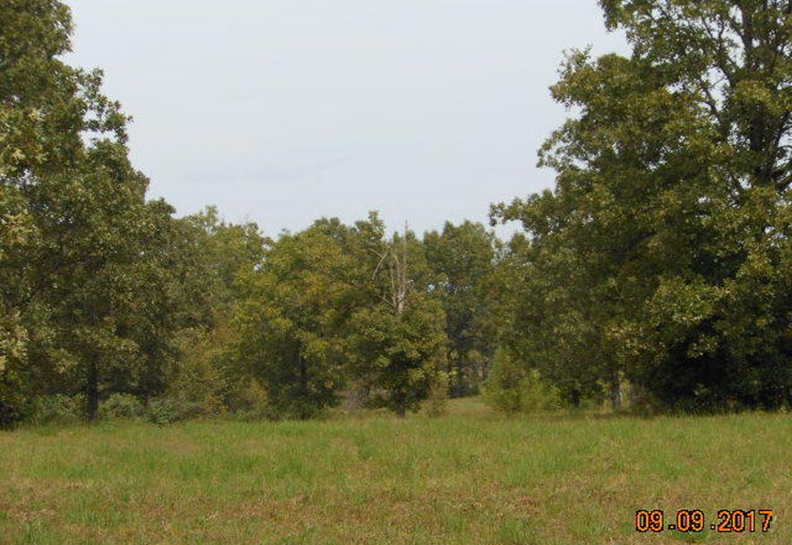 500 Dry Hollow   (5-133) Road Camdenton, MO 65020 - Photo 3