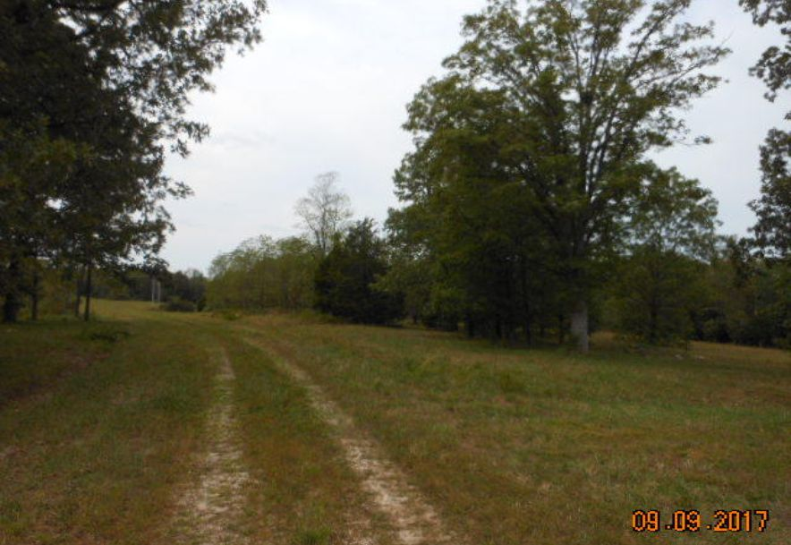 500 Dry Hollow   (5-133) Road Camdenton, MO 65020 - Photo 21