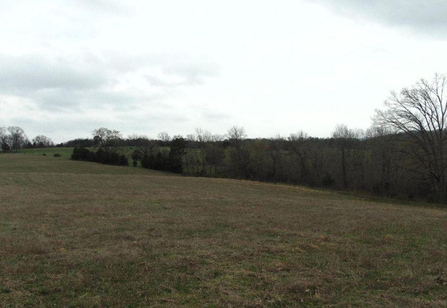 Tbd County Road 14-252 Drury, MO 65638 - Photo 15