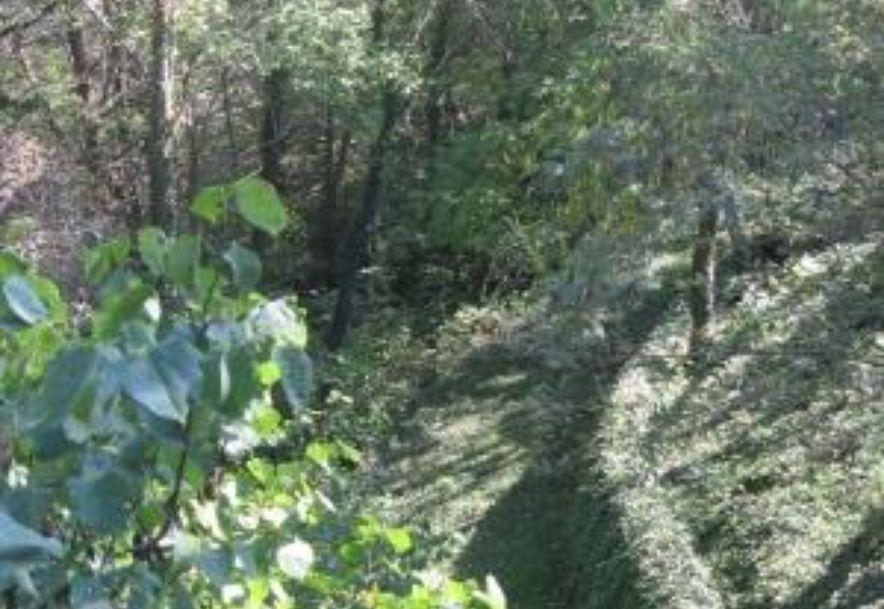 21276 Turtle Ridge Road Hermitage, MO 65668 - Photo 24