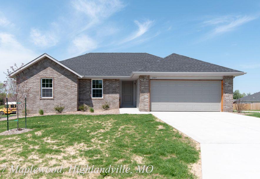 237 Maplewood Drive Highlandville, MO 65669 - Photo 1