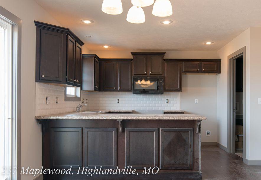 237 Maplewood Drive Highlandville, MO 65669 - Photo 7