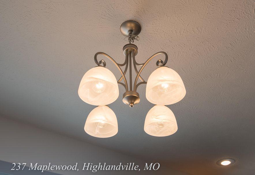237 Maplewood Drive Highlandville, MO 65669 - Photo 8