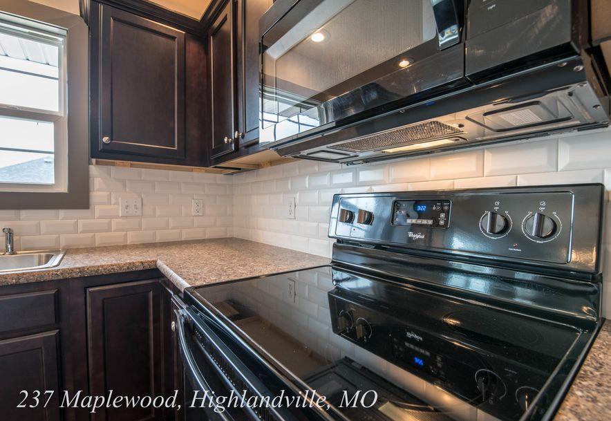 237 Maplewood Drive Highlandville, MO 65669 - Photo 9