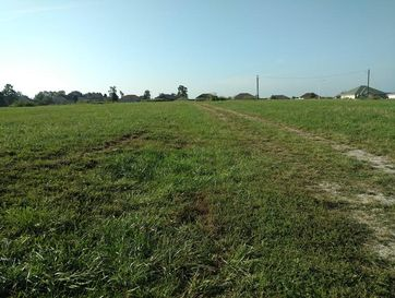 7830 West St Highway 14 Clever, MO 65631 - Image