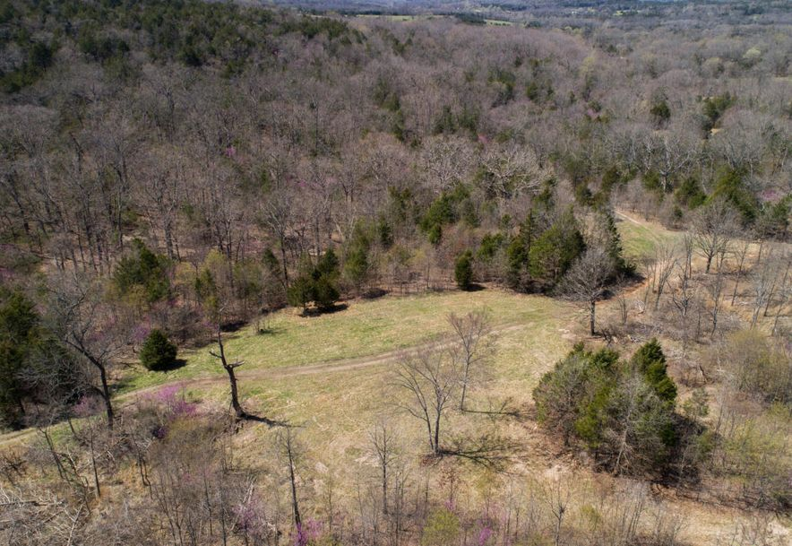 4738 West State Hwy 86 Lampe, MO 65681 - Photo 76