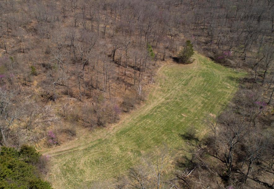 4738 West State Hwy 86 Lampe, MO 65681 - Photo 78