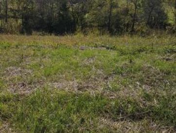Lot 5 Ph 16 Rivercut Springfield, MO 65810 - Image