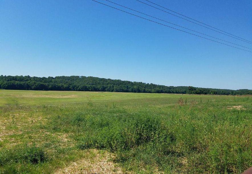 Tbd 38 Highway Hartville, MO 65667 - Photo 4