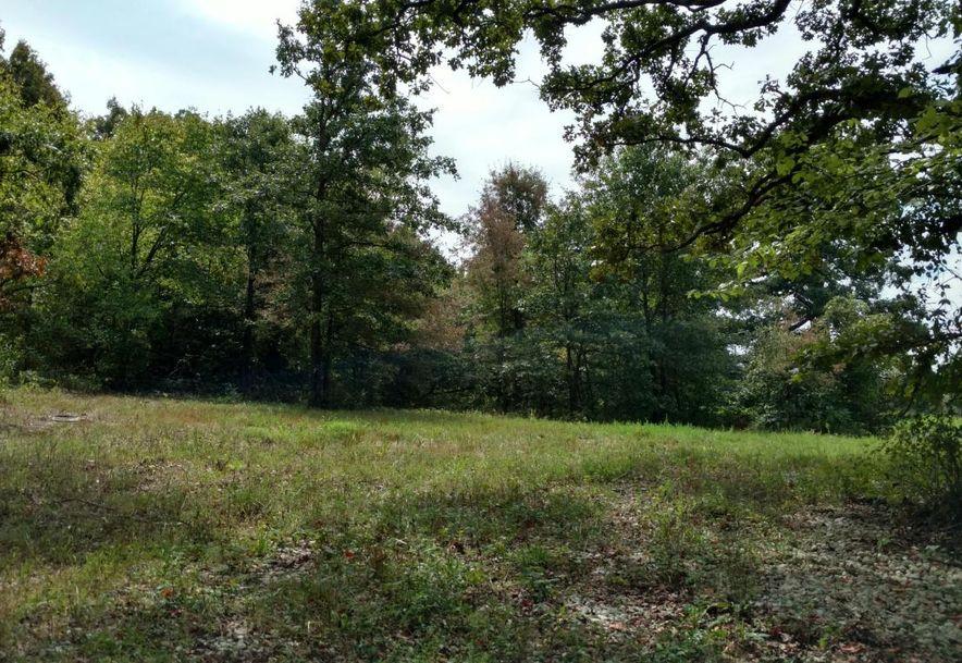 636 East Dade 68 Greenfield, MO 65661 - Photo 1