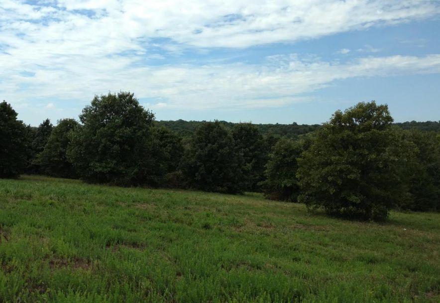 636 East Dade 68 Greenfield, MO 65661 - Photo 4