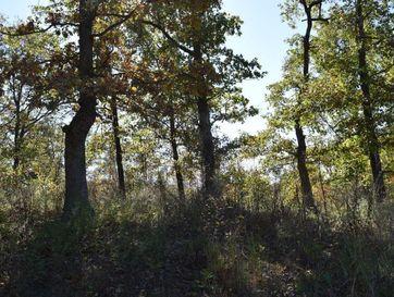 47.76ac North Ferguson & Oakridge Lane Pineville, MO 64856 - Image 1