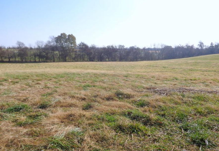 5300 West Republic Road Battlefield, MO 65619 - Photo 1