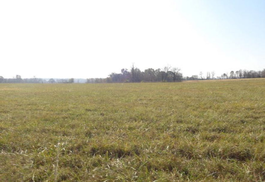 5300 West Republic Road Battlefield, MO 65619 - Photo 44