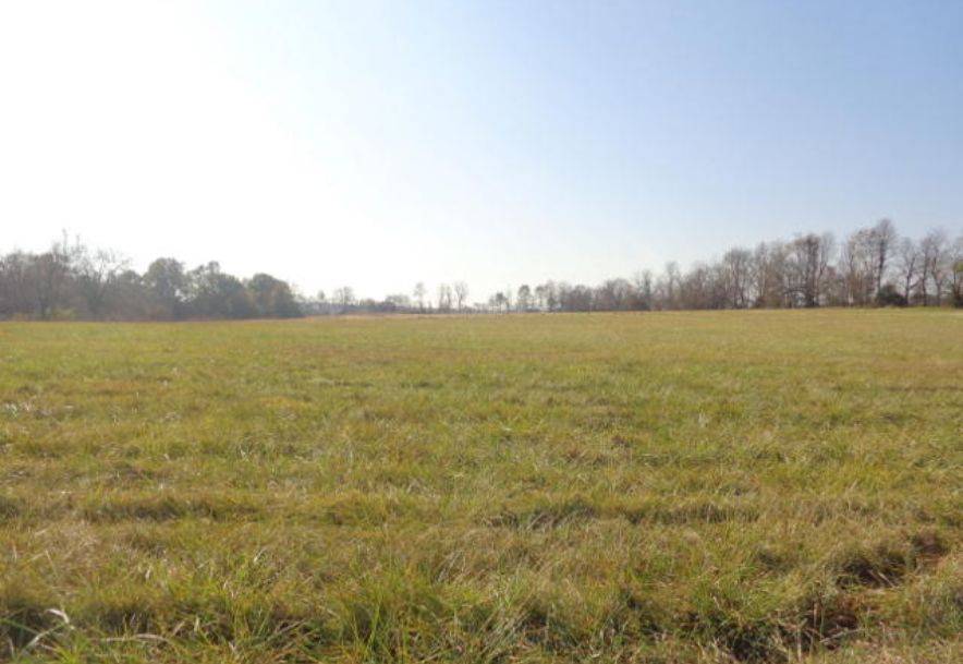 5300 West Republic Road Battlefield, MO 65619 - Photo 45