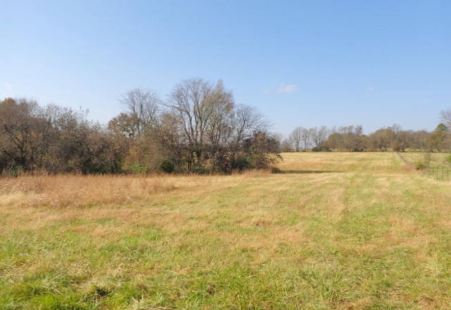 5300 West Republic Road Battlefield, MO 65619 - Photo 55