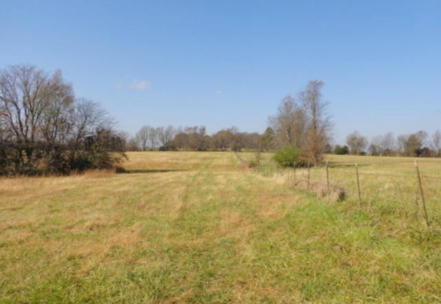5300 West Republic Road Battlefield, MO 65619 - Photo 56