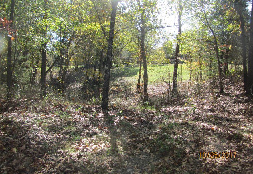 260 Peck Hill Road Rogersville, MO 65742 - Photo 51