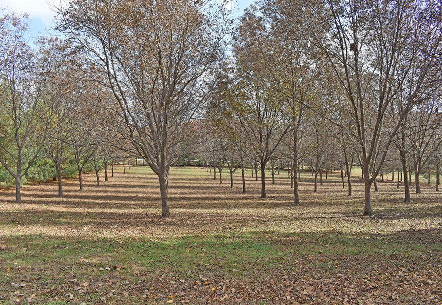4948 East Farm Road 170 Rogersville, MO 65742 - Photo 65