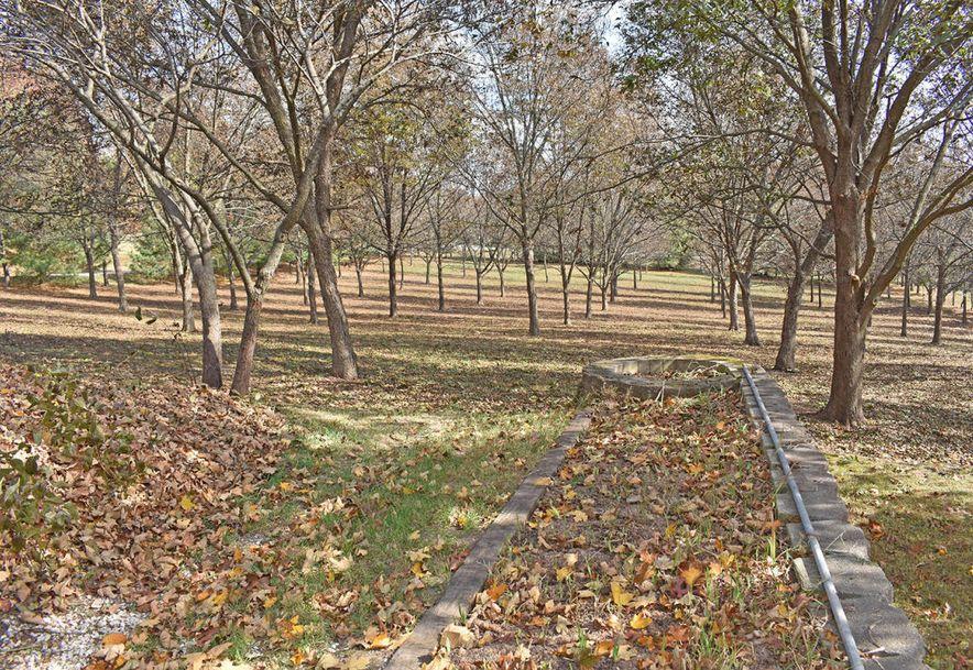 4948 East Farm Road 170 Rogersville, MO 65742 - Photo 96