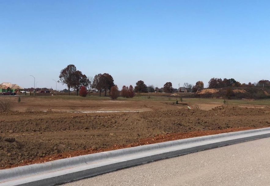 Lot 28 Village Of Ashford Nixa, MO 65714 - Photo 1