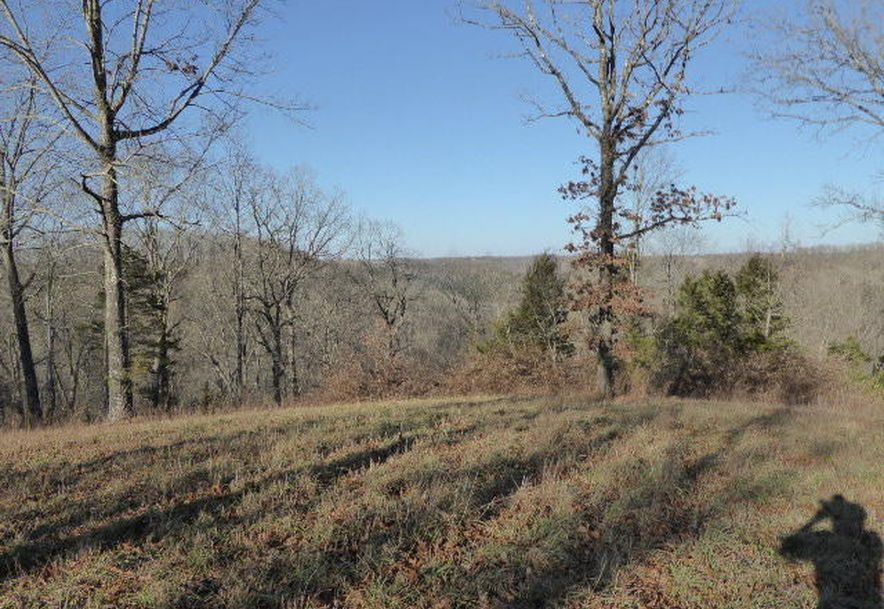 699 State Highway A Chestnutridge, MO 65630 - Photo 62