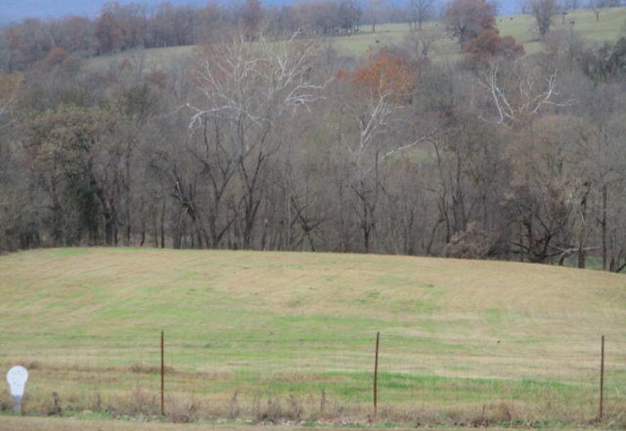 2380 Highway 143 Berryville, AR 72616 - Photo 14