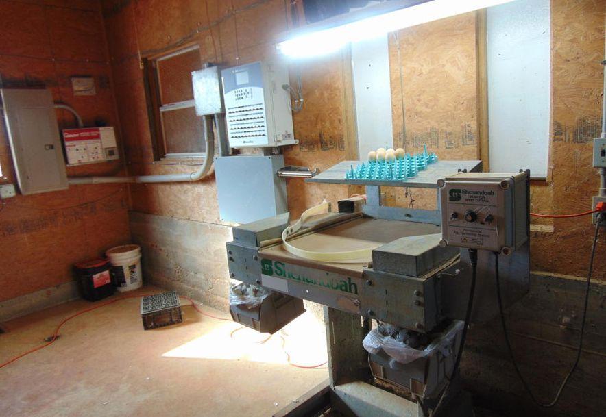 10842 Farm Road 1040 Purdy, MO 65734 - Photo 17