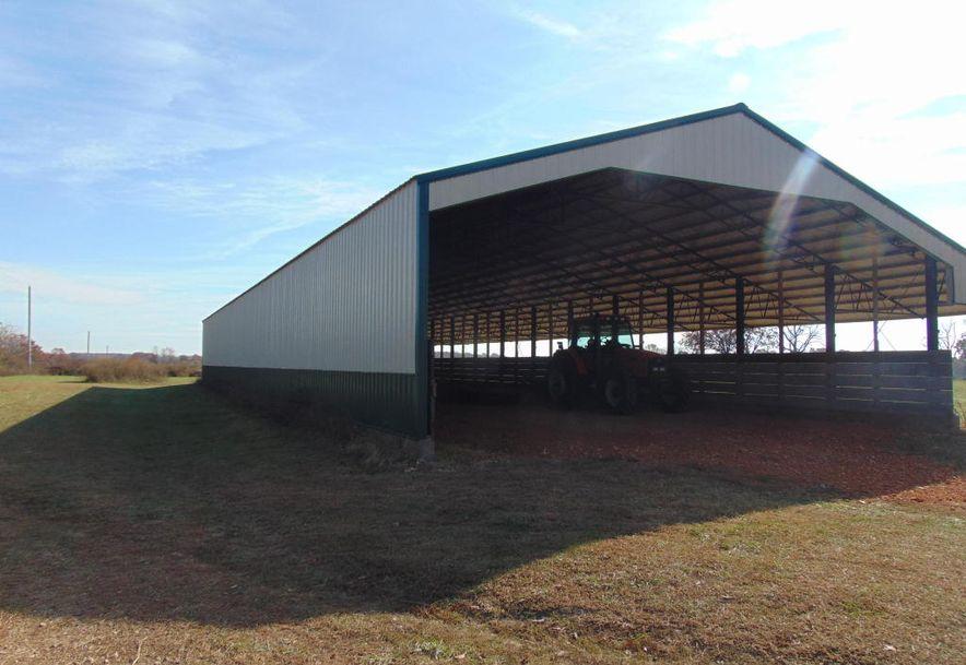 10842 Farm Road 1040 Purdy, MO 65734 - Photo 29