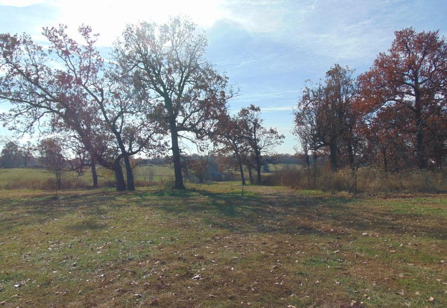 10842 Farm Road 1040 Purdy, MO 65734 - Photo 30