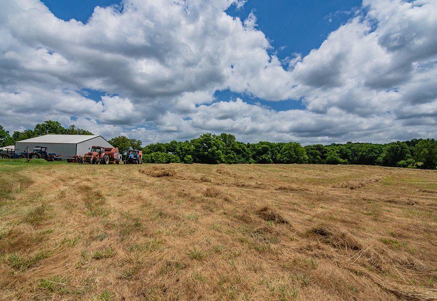 1552 Roberts Ridge Kissee Mills, MO 65680 - Photo 34