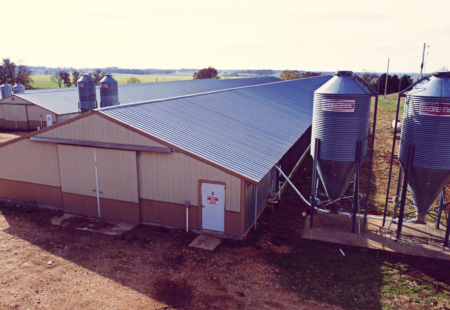 8505.1 Farm Road 2140 Cassville, MO 65625 - Photo 5