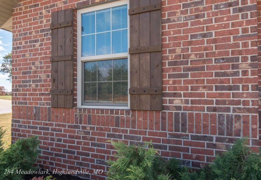 284 Meadowlark Street Highlandville, MO 65669 - Photo 6