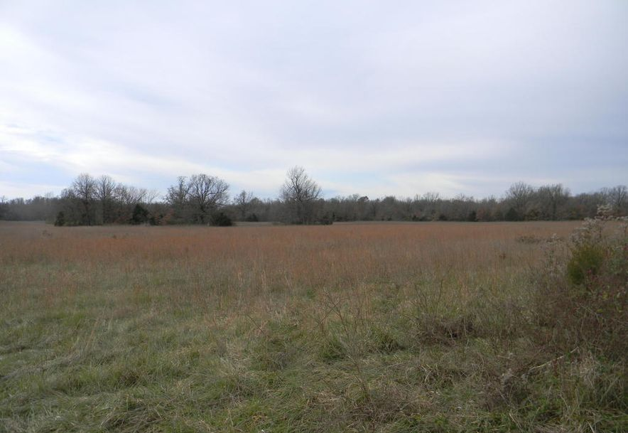 00 North Farm Road 215 Strafford, MO 65757 - Photo 3