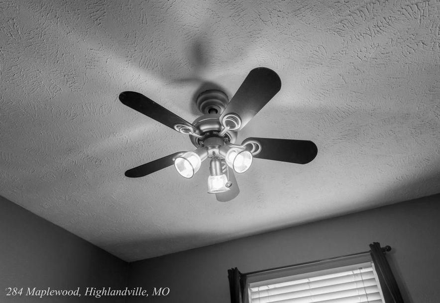 284 Maplewood Dr Highlandville, MO 65669 - Photo 20