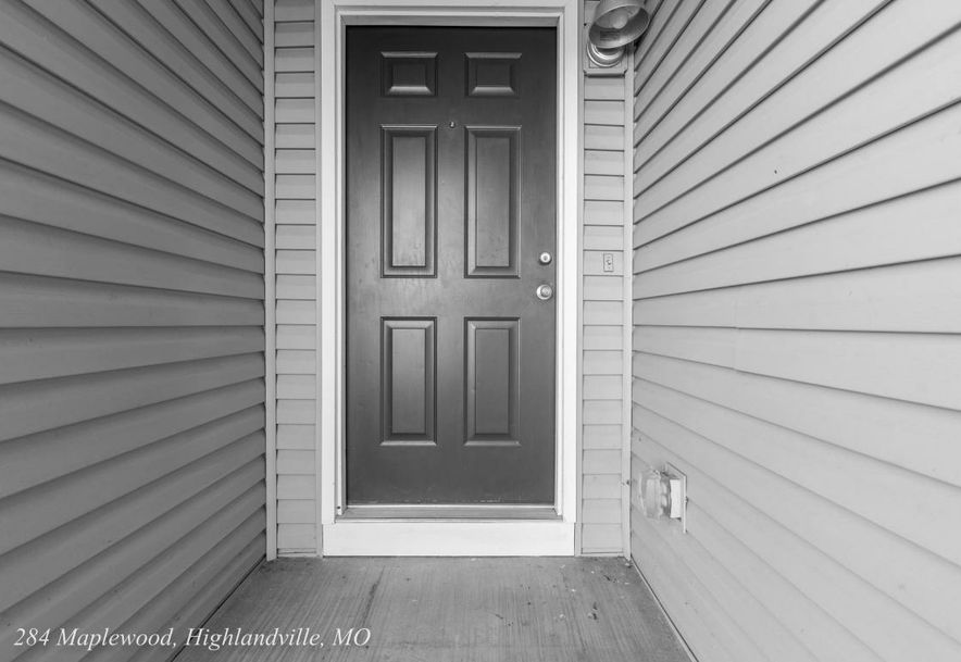 284 Maplewood Dr Highlandville, MO 65669 - Photo 3