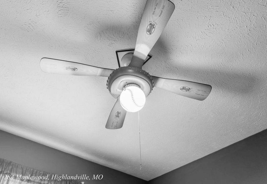 284 Maplewood Dr Highlandville, MO 65669 - Photo 27