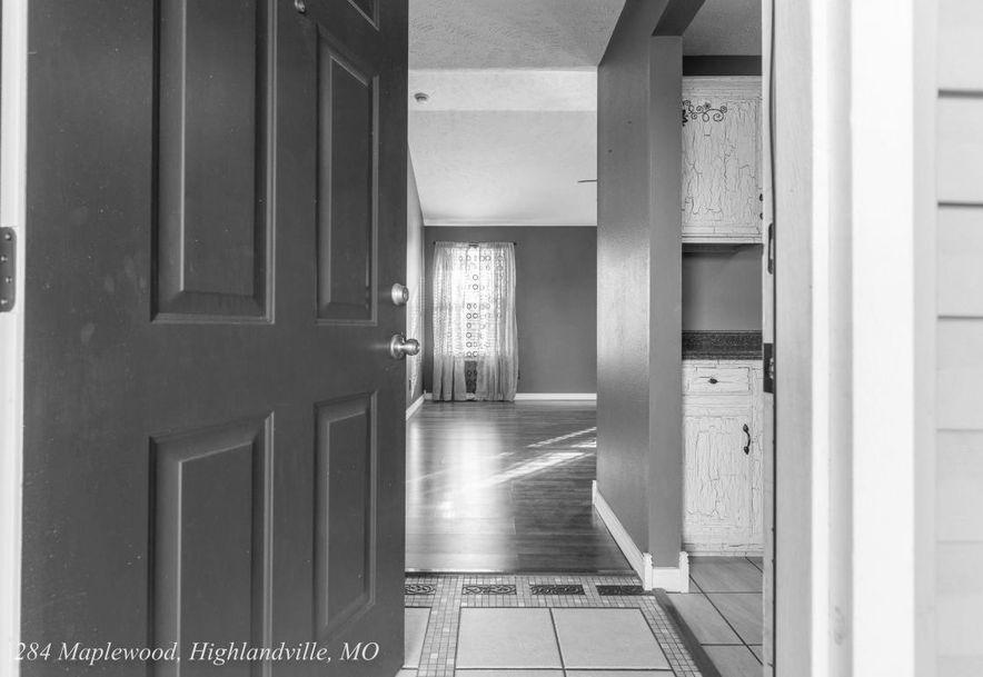 284 Maplewood Dr Highlandville, MO 65669 - Photo 4