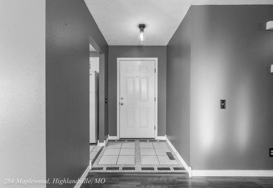 284 Maplewood Dr Highlandville, MO 65669 - Photo 6