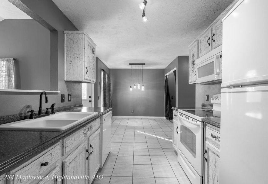 284 Maplewood Dr Highlandville, MO 65669 - Photo 8