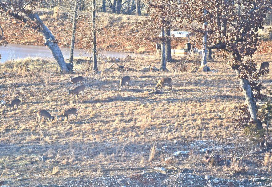 14736 Co Rd 8430 West Plains, MO 65775 - Photo 78