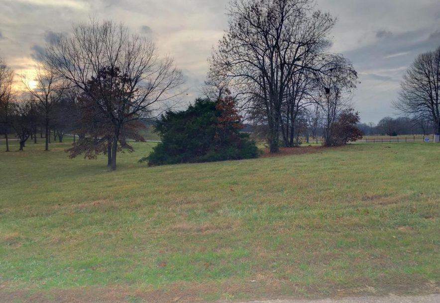 654 White Oak Road Lot 1a Rogersville, MO 65742 - Photo 3