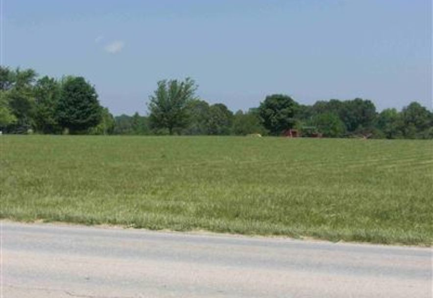 0 Hwy 14 Clever, MO 65631 - Photo 4