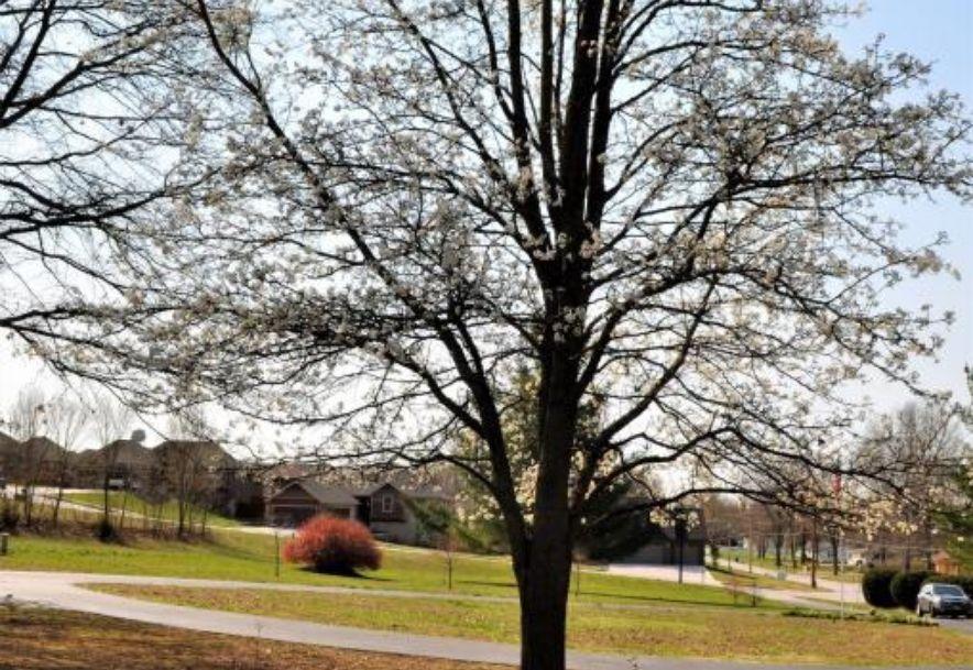 1806 North Riverside Road Ozark, MO 65721 - Photo 55