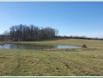 7631 East Farm Rd 182 Rogersville, MO 65742 - Image 1