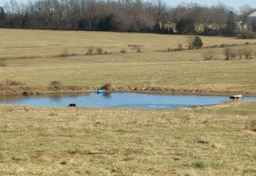7631 East Farm Rd 182 Rogersville, MO 65742 - Photo 3